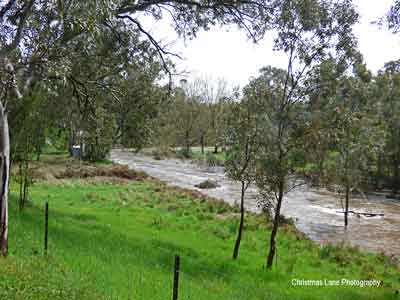 The River Torrens, Banks Road, Cudlee Creek, SA