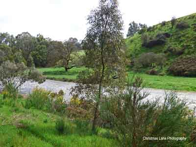 The River Torrens, Banks Road, Cudlee Creek, SA.
