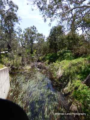 The River Torrens, Talunga Park Road, Mount Pleasant
